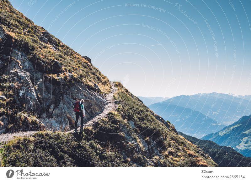 Aufstieg zum Hirzer in Südtirol | Alpenüberquerung E5 Berge u. Gebirge wandern Klettern Bergsteigen Natur Landschaft Wolkenloser Himmel Sommer Schönes Wetter