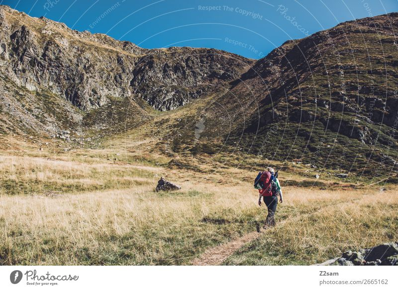 Aufstieg zum Hirzer in Südtirol | Alpenüberquerung E5 Freizeit & Hobby Ferien & Urlaub & Reisen Berge u. Gebirge wandern Klettern Bergsteigen Junge Frau