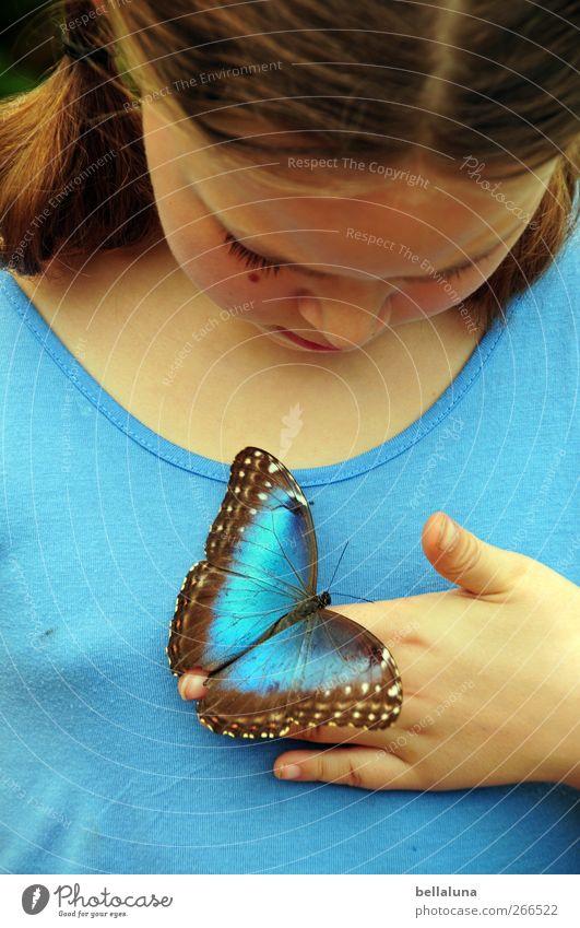 Du und ich. Mensch Kind blau Hand schön Mädchen Tier Gesicht Auge feminin Haare & Frisuren Kopf Körper Kindheit Wildtier Mund