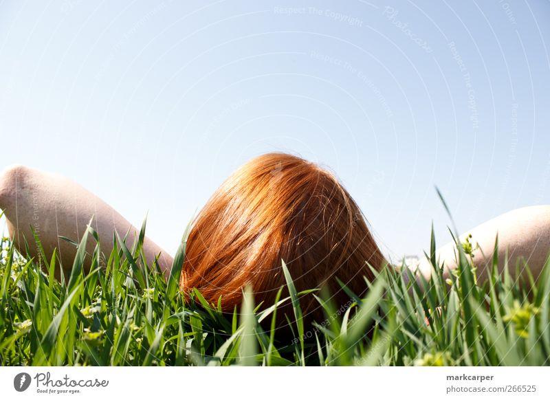 Rothaarige Frau, die im Gras liegt und nach oben schaut. Erholung Sonne Mensch Junge Frau Jugendliche Erwachsene 1 18-30 Jahre Himmel rothaarig hoch lang grün
