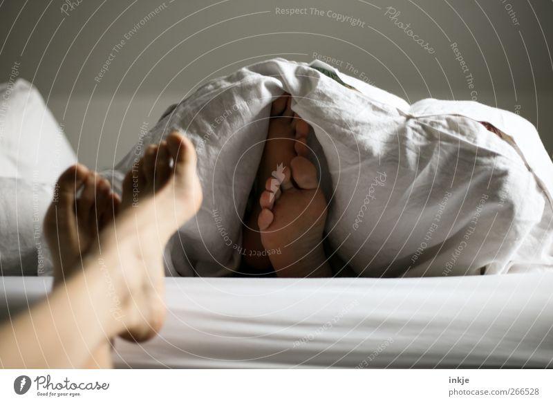 Paargeschichten Mensch ruhig Erholung feminin Leben nackt Gefühle Paar Fuß Stimmung Zusammensein Freizeit & Hobby warten liegen maskulin schlafen