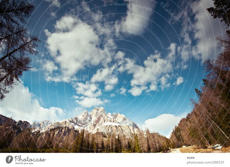 Monte Cristallo Himmel Natur blau Ferien & Urlaub & Reisen Sommer Wolken Landschaft Wald Umwelt Berge u. Gebirge außergewöhnlich Klima groß Idylle