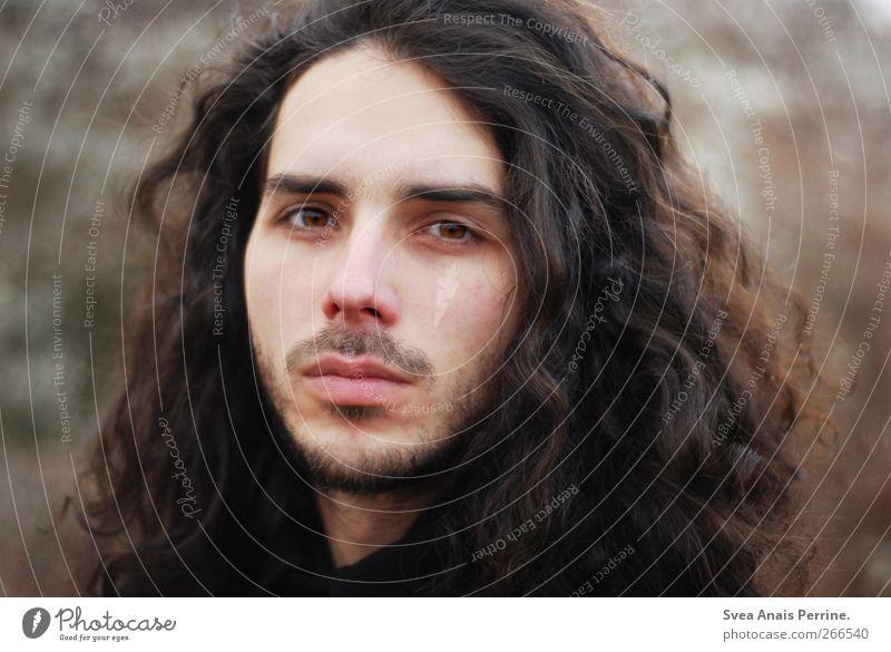 zartbitter. Mensch Natur Jugendliche schön Gesicht Erwachsene Herbst Haare & Frisuren natürlich maskulin 18-30 Jahre beobachten Sehnsucht Locken brünett langhaarig
