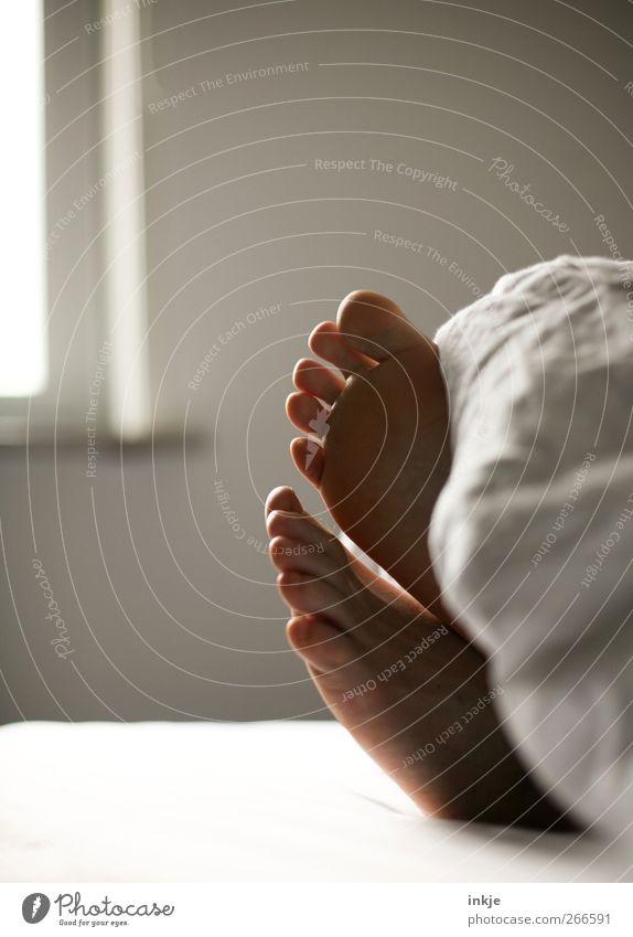 guten Morgen ! Lifestyle harmonisch Wohlgefühl ruhig Freizeit & Hobby Häusliches Leben Schlafzimmer Bett Fuß 1 Mensch Bettdecke Erholung liegen schlafen träumen