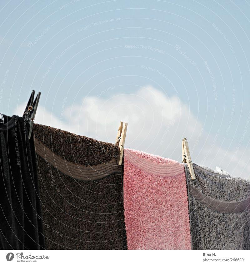 Wäsche und Wolke II Himmel Wolken Sommer Schönes Wetter hängen frisch Reinlichkeit Sauberkeit Wäscheleine Wäscheklammern Handtuch luftig Farbfoto Außenaufnahme