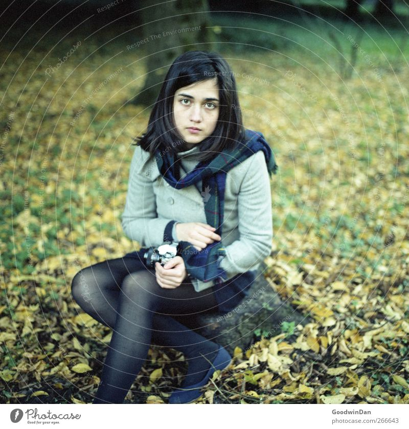 Das Negativ duftet nach Laub Mensch feminin Junge Frau Jugendliche Erwachsene 1 Umwelt Natur Herbst Blatt Baumstamm Park Denken hocken sitzen warten authentisch