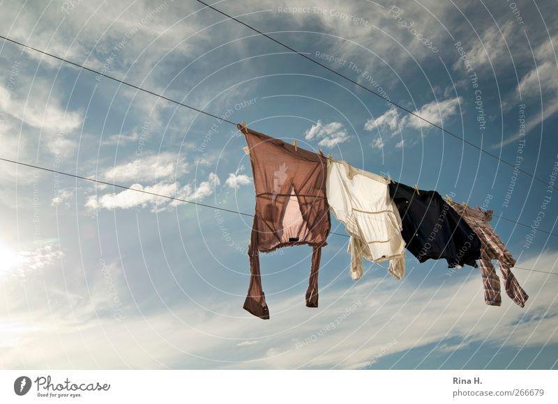 und noch mehr Wäsche auf der Leine II Himmel blau weiß Sommer Wolken hell frisch authentisch T-Shirt Sauberkeit Schönes Wetter Hemd hängen trocknen Wäscheleine luftig