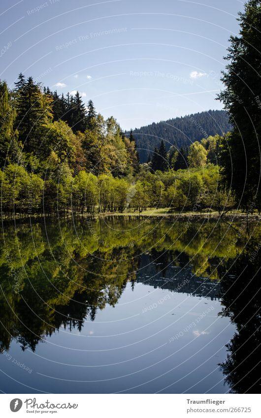 Stille Wasser sind... Natur blau Wasser grün Baum Pflanze Sommer Einsamkeit ruhig Wald Erholung Landschaft Berge u. Gebirge Freiheit See Hügel
