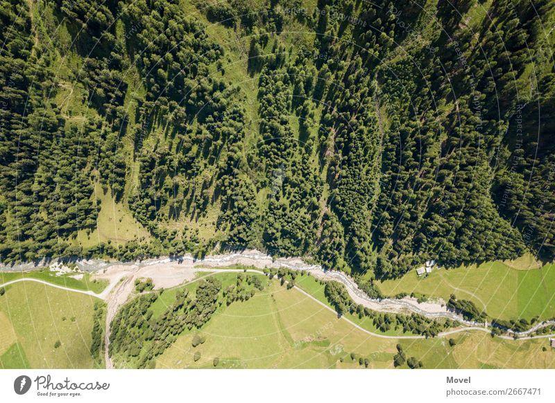Earth Surfaces Natur Landschaft Erde Luft Wasser Baum Grünpflanze Park Wald Hügel Felsen Alpen Berge u. Gebirge Gipfel Alm beobachten fallen laufen
