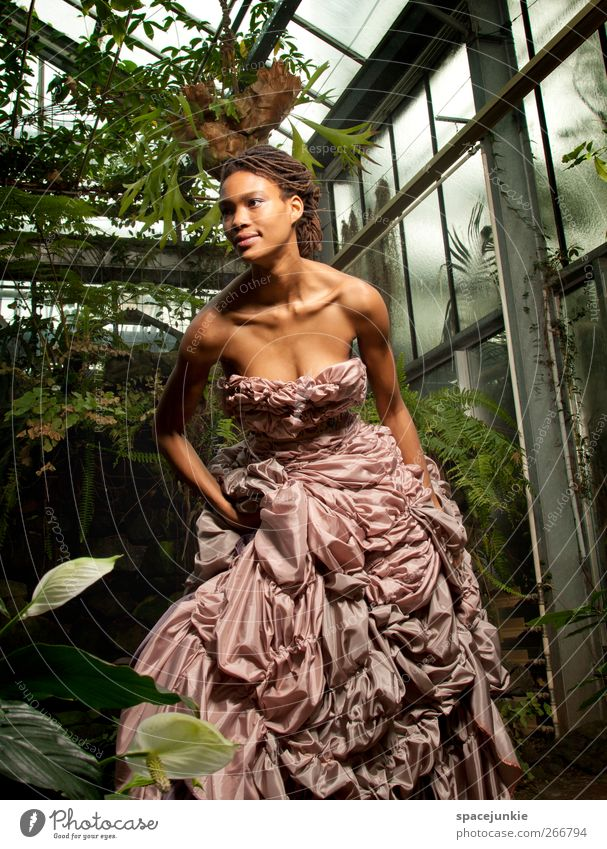 Tropical baroque Mensch Frau Natur Jugendliche Blatt Erwachsene feminin Mode träumen Glas Klima außergewöhnlich Junge Frau 18-30 Jahre Kleid Urwald