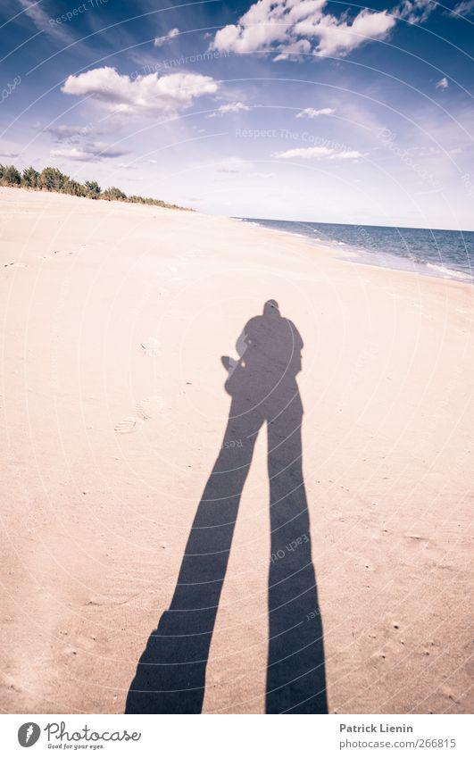 Neues Land Mensch Himmel Natur Pflanze Sonne Sommer Strand Einsamkeit Umwelt Landschaft Leben Sand Luft Körper Wetter Wellen