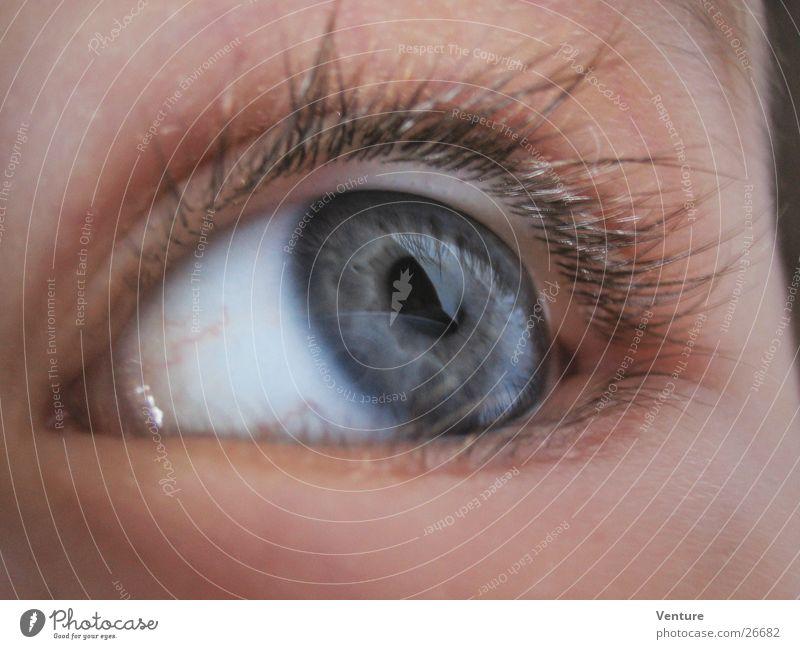 Seitenblick Nahaufnahme Wimpern Pupille Mensch Auge Makroaufnahme Detailaufnahme Regenbogenhaut