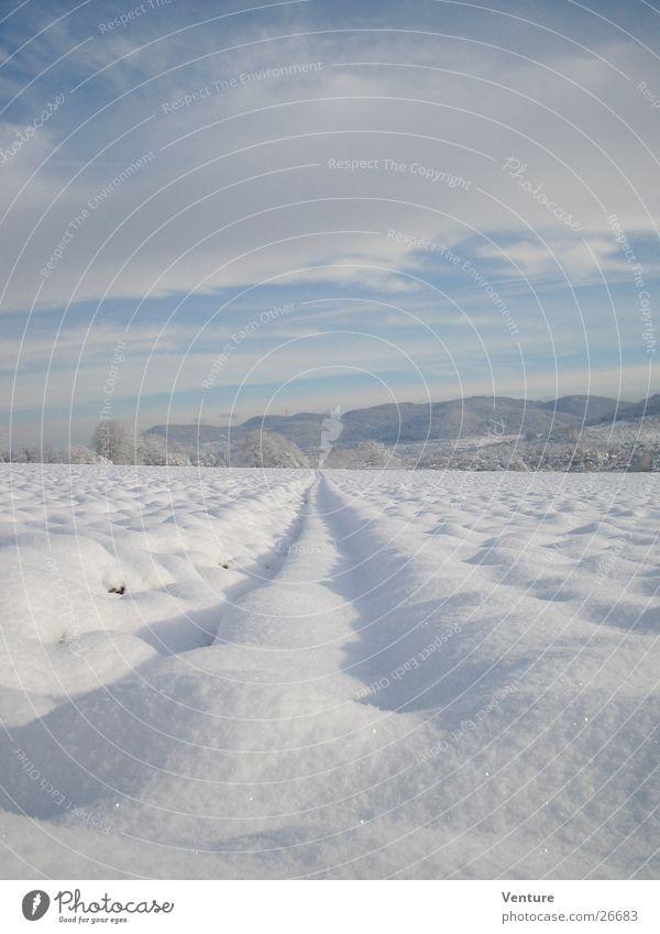 Schneeflucht Winter Wolken Feld kalt frieren gefroren Dezember Januar Februar Spuren Fluchtpunkt Einsamkeit Luft Hügel Sonnenaufgang Himmel Eis Perspektive