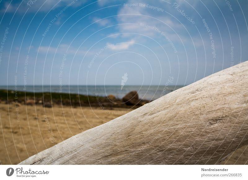 Maritim harmonisch ruhig Ferien & Urlaub & Reisen Ferne Sommer Strand Meer Natur Landschaft Wolken Schönes Wetter Küste Ostsee Holz Erholung blau braun Farbe