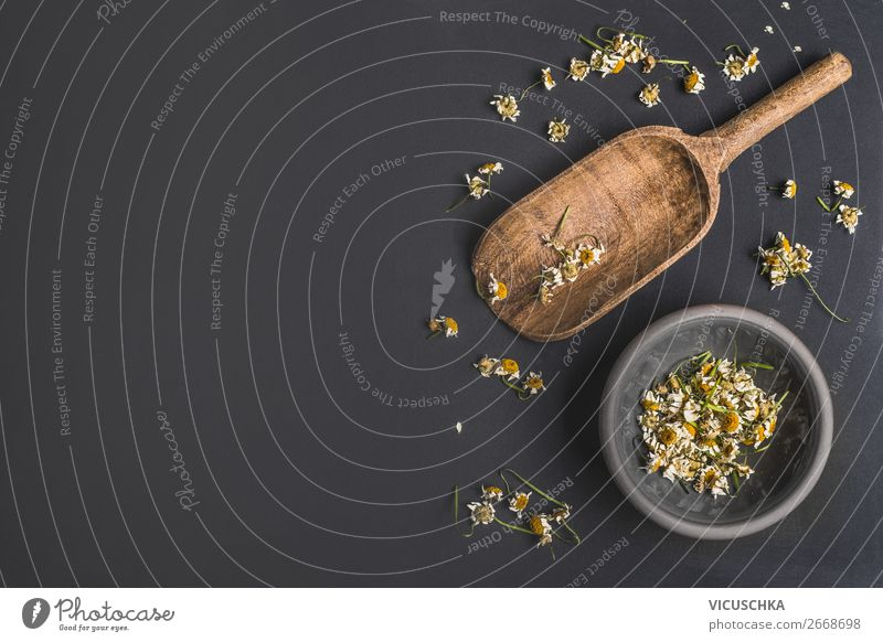 Getrocknete Kamillenblumen Lebensmittel Kräuter & Gewürze Ernährung Bioprodukte Vegetarische Ernährung Diät Design Gesundheit Behandlung Alternativmedizin