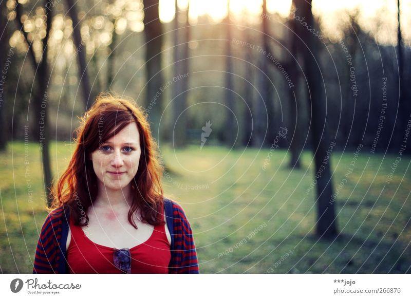 abendlicht in den haaren. Mensch feminin Junge Frau Jugendliche Erwachsene 1 18-30 Jahre Baum Park Wald Lächeln Abenddämmerung Natur rothaarig schön