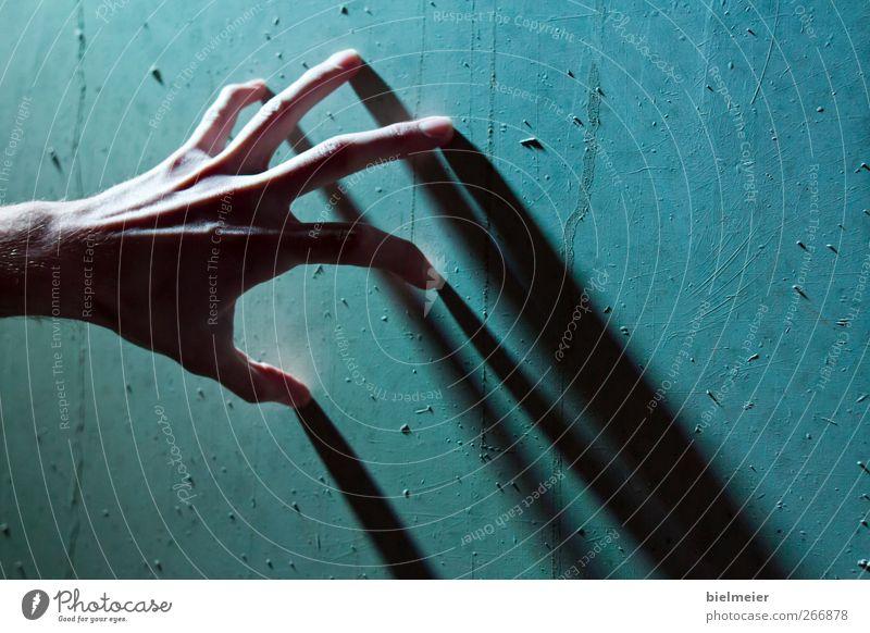cool finger Mensch Mann Jugendliche blau Hand weiß grün schön schwarz Erwachsene Leben Wand Architektur Bewegung grau Mauer