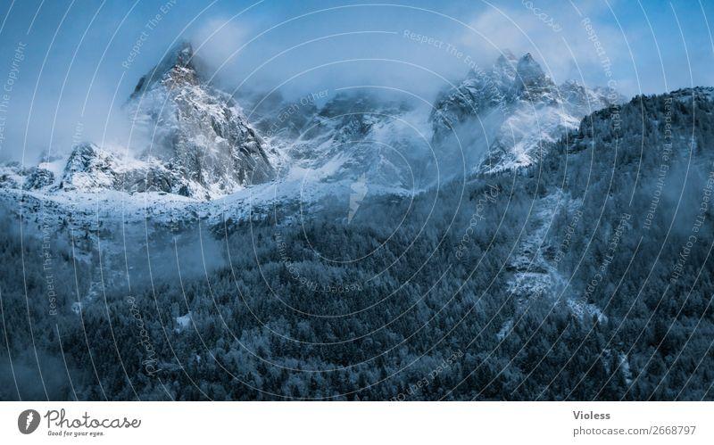 Chamonix Schnee Berge u. Gebirge Wolken Alpen Gipfel kalt Frankreich Bergkamm Bergkette Arve Farbfoto Silhouette