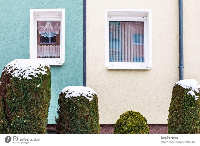 Family Winter Schnee Pflanze Sträucher Stadt Haus Bauwerk Gebäude Architektur Mauer Wand Fassade Fenster Dachrinne Linie kalt grün türkis weiß mehrere Gardine