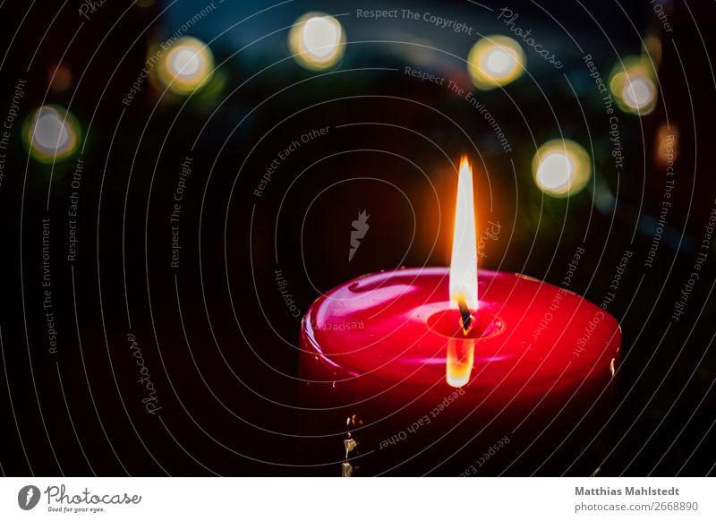 Adventskranzkerze Dekoration & Verzierung Weihnachten & Advent Kerze kuschlig rot schwarz Glück Zufriedenheit Geborgenheit Warmherzigkeit Idylle Farbfoto