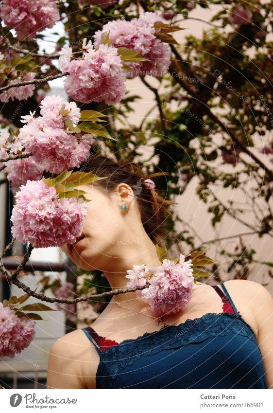 Inkognito exotisch Körper Haare & Frisuren feminin Junge Frau Jugendliche Erwachsene 1 Mensch Pflanze Frühling Baum Blatt Blüte Top Spitze brünett Zopf schön