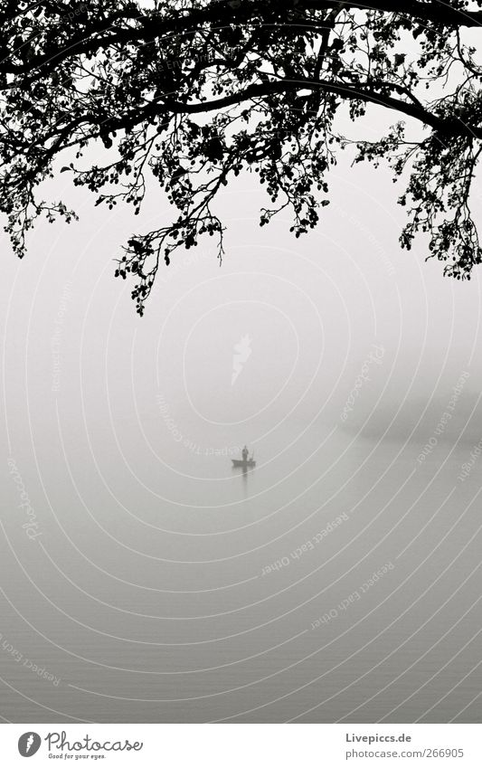 einsamer Angler Mensch 1 Natur Landschaft Herbst Nebel Pflanze Baum grau schwarz weiß Nebelstimmung Schwarzweißfoto Außenaufnahme Tag See Angeln