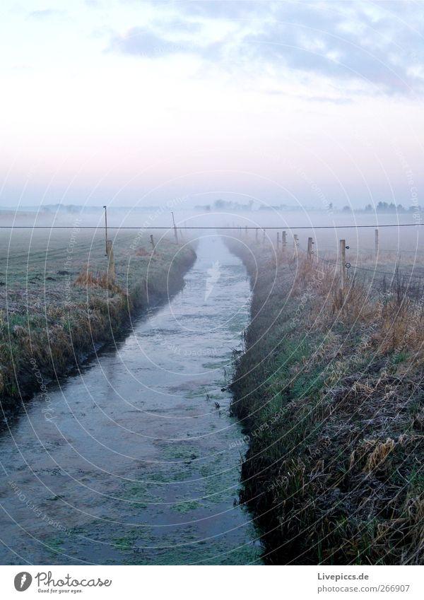Solzow Umwelt Natur Landschaft Pflanze Himmel Sonnenaufgang Sonnenuntergang Frühling Wetter Nebel Gras Feld Flussufer Wasser blau grau grün Nebelstimmung