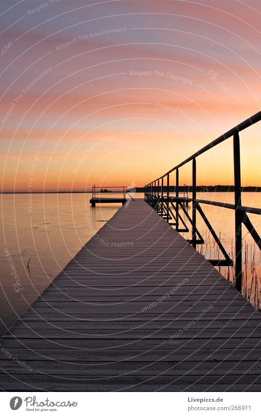 Müritzblick Himmel Natur Wasser Pflanze Strand Winter gelb Küste See rosa Schönes Wetter Seeufer