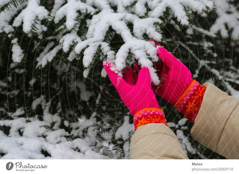 Rote Handschuhen Zeder Feste & Feiern Weihnachten & Advent kalt Dezember Tanne Wald Frost Mädchen grün gestrickt Natur natürlich neu Außenaufnahme Mensch Kiefer