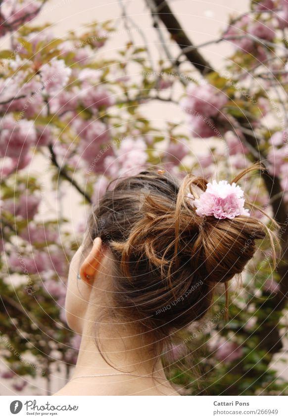 a sweet season Haare & Frisuren feminin Junge Frau Jugendliche 1 Mensch Pflanze Frühling Blume Blüte brünett langhaarig Zopf einfach Freundlichkeit schön