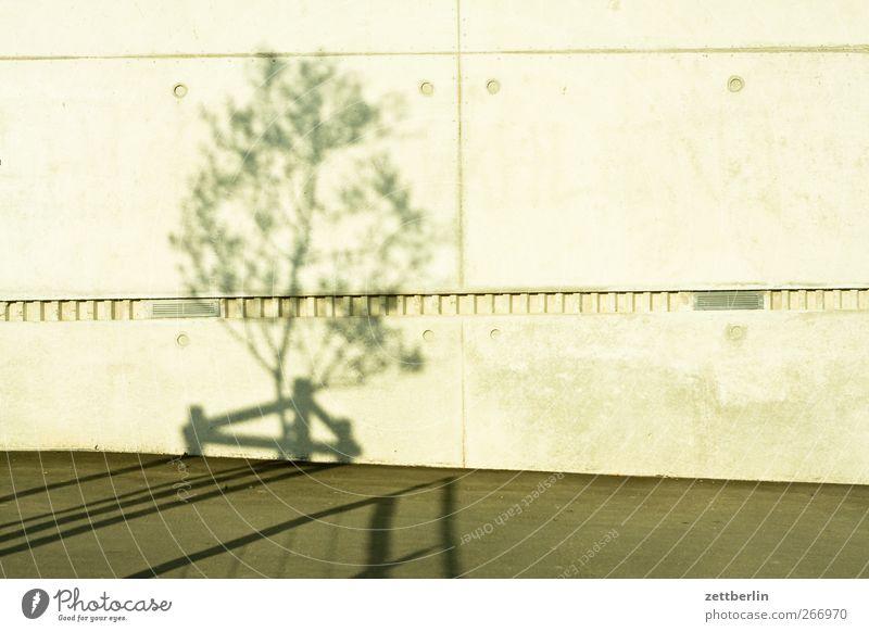 Schatten Umwelt Natur Klima Klimawandel Schönes Wetter Garten Park Kleinstadt Stadt Bauwerk Gebäude Architektur Mauer Wand gut wallroth Baum Beton Farbfoto