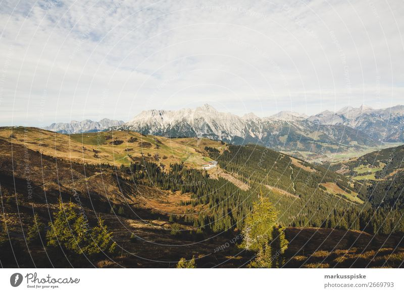 Asitz, Leogang Ferien & Urlaub & Reisen Natur Pflanze Landschaft Tier Ferne Berge u. Gebirge Leben Herbst Tourismus außergewöhnlich Freiheit Ausflug