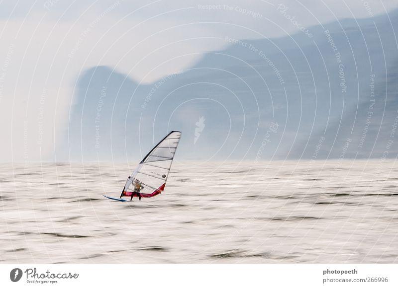 Windsurfer in Torbole, Gardasee 01 Sport Wassersport Sportler Surfbrett Natur Horizont Alpen Berge u. Gebirge Wellen Seeufer Geschwindigkeit Bewegung