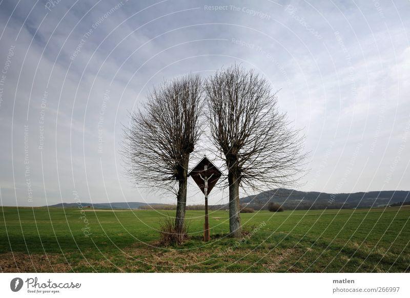 geteiltes Leid blau grün Baum Wolken Wiese Frühling Wege & Pfade Gras Horizont Schönes Wetter Kruzifix geteilt