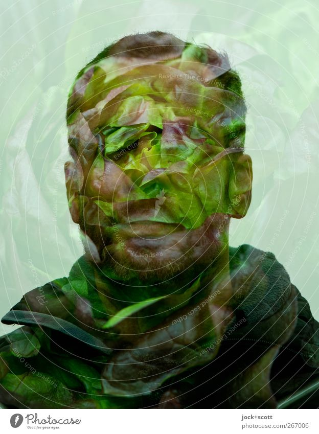 Kopfsalat Ernährung Gesunde Ernährung Mann Erwachsene 1 Mensch 30-45 Jahre Lächeln fantastisch Gesundheit lecker grün Gefühle Identität einzigartig skurril