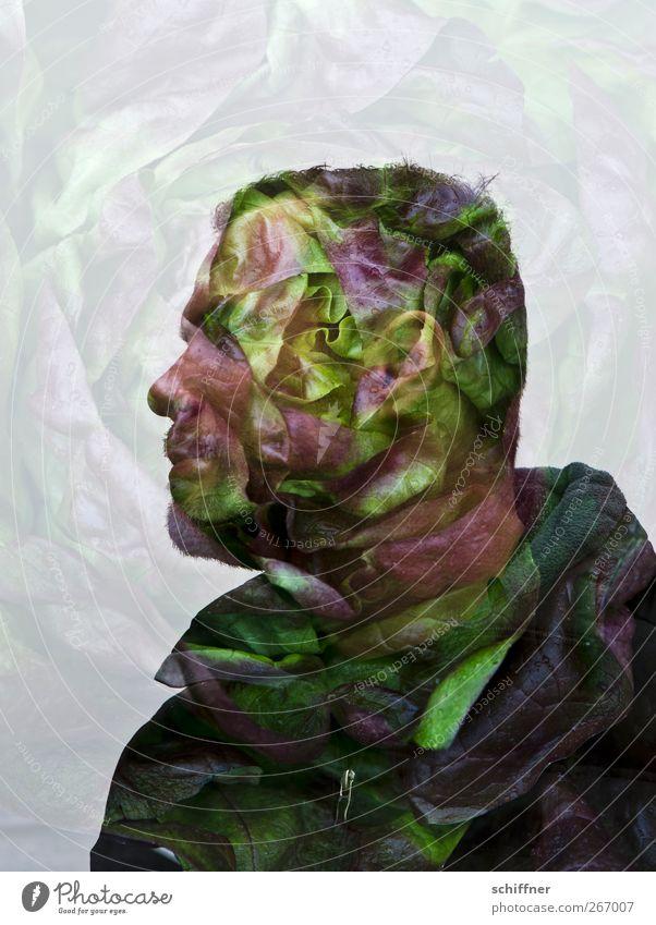 Kopfsalat Mensch Mann grün Gesicht Erwachsene Ernährung lustig Gesundheit außergewöhnlich maskulin Nase Ohr Gesunde Ernährung Idee fantastisch