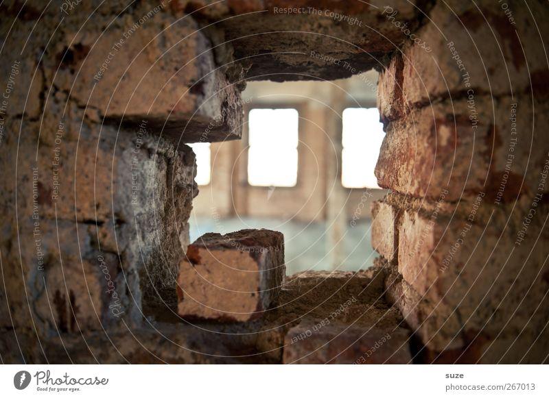 Augen durch und zu Innenarchitektur Raum Gebäude Mauer Wand Fenster Stein Backstein alt dreckig kaputt Verfall Vergangenheit Vergänglichkeit Lichteinfall