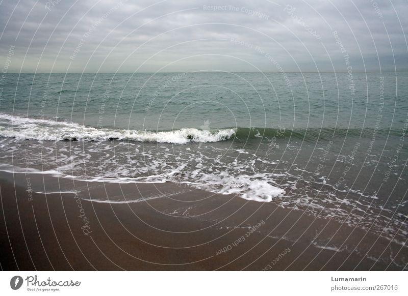Nordsee Himmel Wasser Ferien & Urlaub & Reisen Strand Wolken Einsamkeit Ferne Erholung Umwelt Landschaft kalt Küste Freiheit Sand Luft Horizont