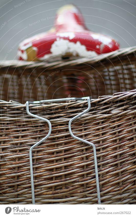 Fahrradkorb alt rot natürlich braun Fahrrad stehen Armut einfach Fitness kaputt Kitsch Kunststoff sportlich Draht Behälter u. Gefäße Korb