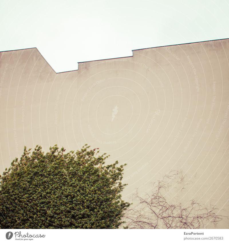 -\-/-/-- Pflanze Baum Stadt Haus Bauwerk Gebäude Architektur Mauer Wand Fassade Dach Beton Linie grau grün leer Brandmauer Zickzack Himmel Blatt Farbfoto