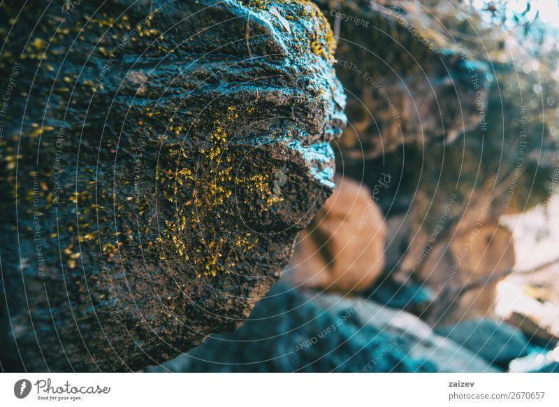 Ein großer, geneigter Stein mit etwas Moos und mehr unfokussierten Steinen im Hintergrund Gesicht Leben Berge u. Gebirge Umwelt Natur Landschaft Pflanze Felsen