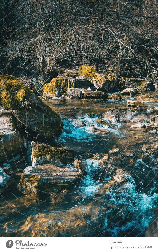 Ein wilder Fluss, der durch große Felsen mit Moos fließt schön Ferien & Urlaub & Reisen Tourismus Abenteuer Wellen Winter Berge u. Gebirge wandern Umwelt Natur