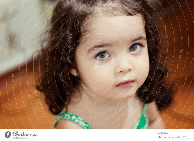 Mensch Kind schön Mädchen ruhig Gesicht feminin Raum Kindheit niedlich Neugier rein Kleinkind unschuldig krause Haare 1-3 Jahre