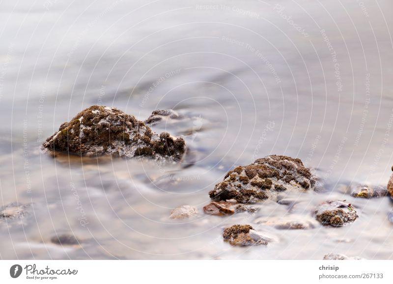 Steine imWassernebel Umwelt Natur Moos Wellen Flussufer Bach Flüssigkeit frisch kalt Erfrischung Quelle Trinkwasser natürlich fließen Farbfoto Außenaufnahme