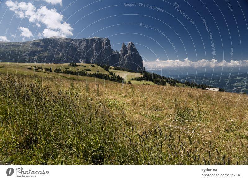 Blühende Landschaft Himmel Natur Ferien & Urlaub & Reisen Sommer ruhig Ferne Erholung Umwelt Wiese Leben Berge u. Gebirge Freiheit Gras träumen Horizont