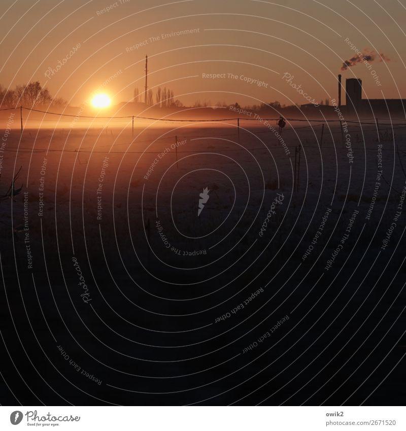 Letzter Blick Umwelt Natur Landschaft Wolkenloser Himmel Horizont Sonne Winter Wiese Stadtrand Fabrik Heizkraftwerk Schornstein leuchten Ferne ruhig Weide Zaun