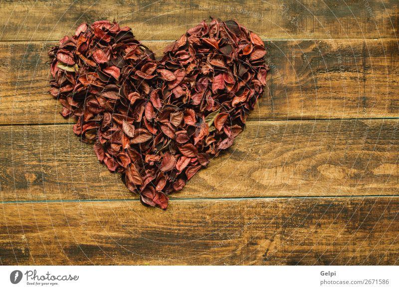 Schönes Herz mit trockenen Blütenblättern schön Dekoration & Verzierung Feste & Feiern Hochzeit Natur Pflanze Blume Holz Liebe rot Leidenschaft Romantik