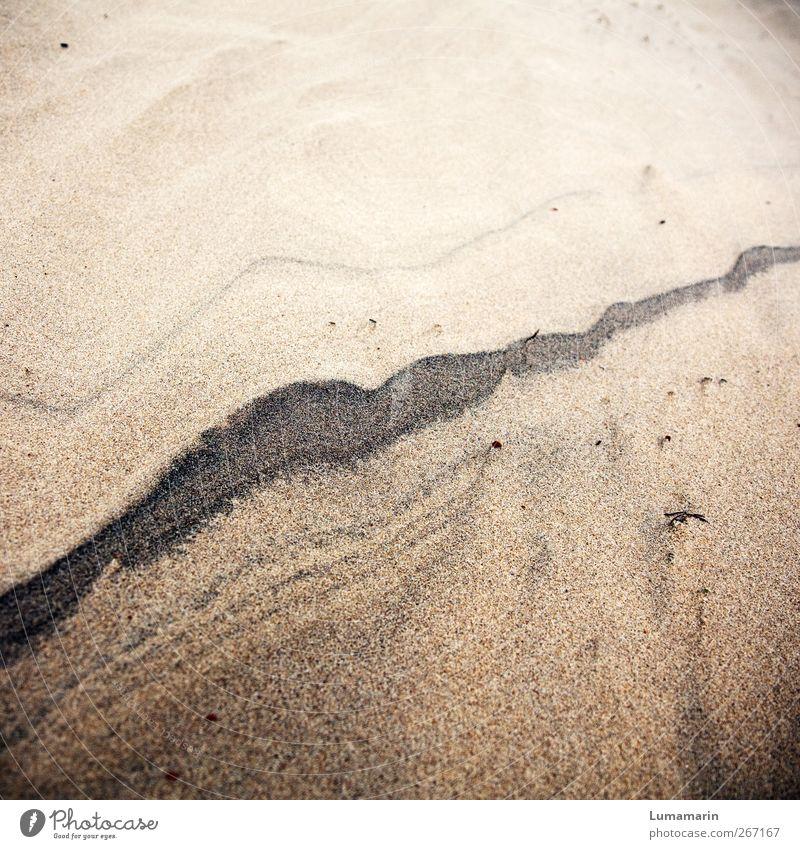 Erinnerungen schön Ferien & Urlaub & Reisen Strand Umwelt Sand Linie Zeit natürlich Boden Urelemente Wandel & Veränderung Streifen weich Spuren nah Ewigkeit