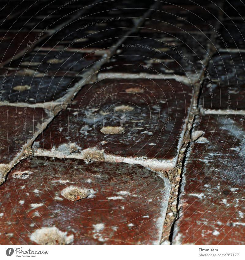 Karl geht zu Boden. Wohnung Keller Kellerboden Stein Sand Blick authentisch einfach braun weiß Fuge Loch Backstein Farbfoto Gedeckte Farben Innenaufnahme