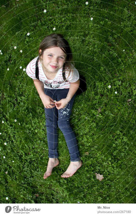 endlich *10* Kind Natur Pflanze Sommer Mädchen ruhig Erholung Wiese feminin Frühling Gras Glück Garten Kindheit Zufriedenheit sitzen